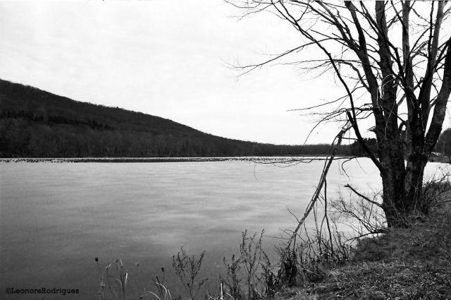 Day 345 - Lake 2